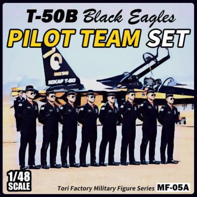 ROK Black Eagles Pilots set (8 Figures)